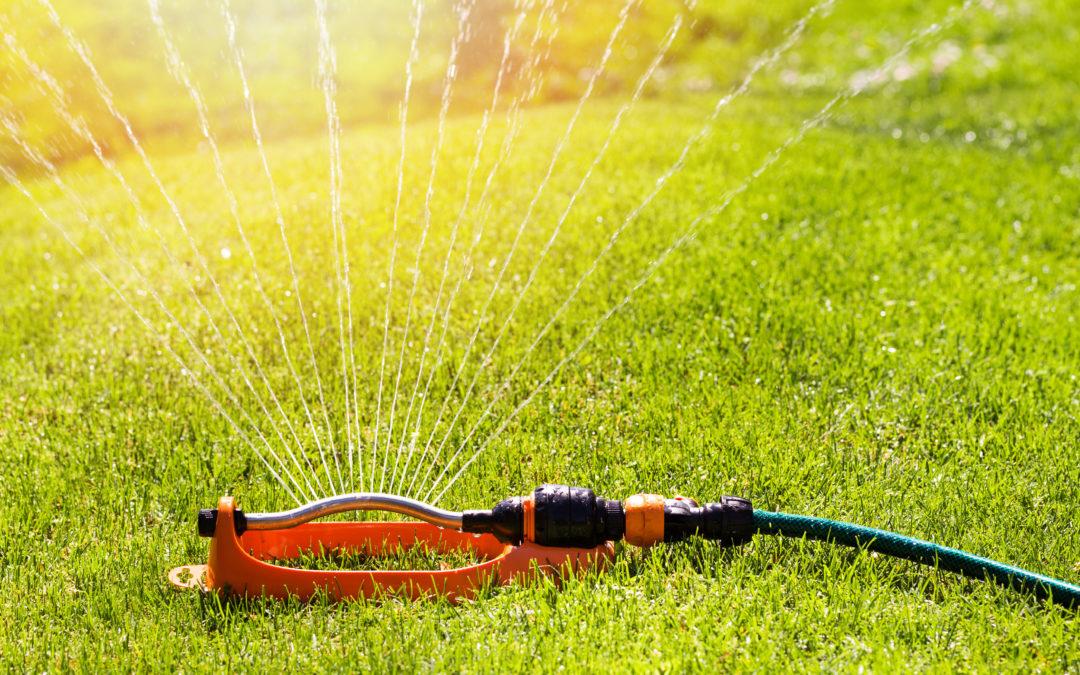 Summer Watering